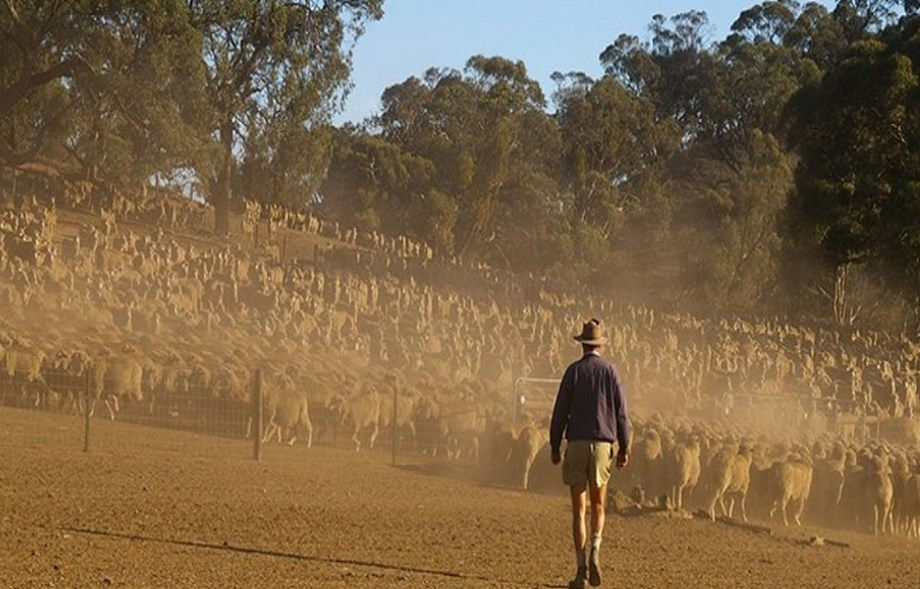 Australia faces worst drought, bad start for wet season