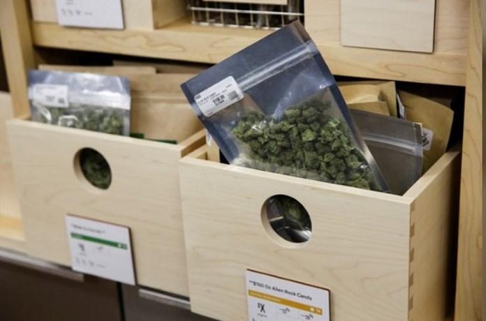 Opioid prescriptions may decline if states legalize marijuana, two US studies suggest