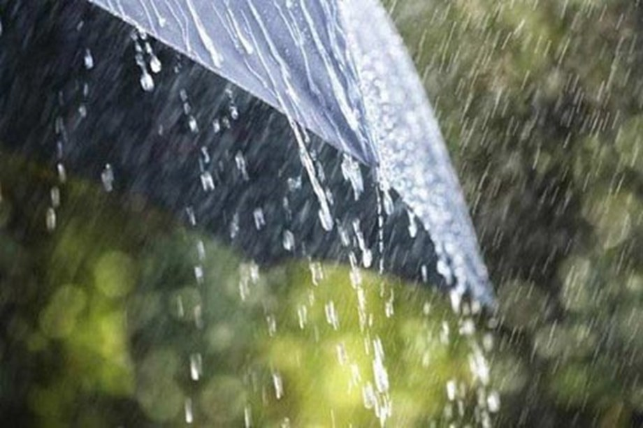 Tweleve killed, five injured in rain-related incidents in UP