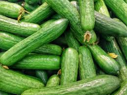 World's longest cucumber grower says praying to it led to success