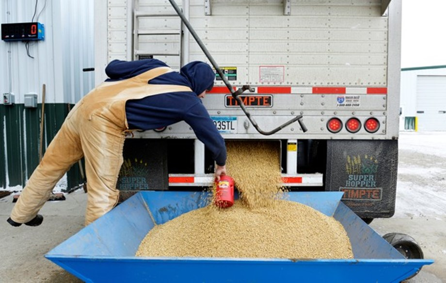 Trade War: China will face difficulties in replacing US soybean supplies