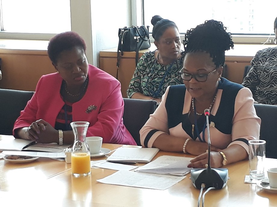 Deputy Minister Zou Kota-Fredericks to participate in Women's Dialogue commemorating women's month