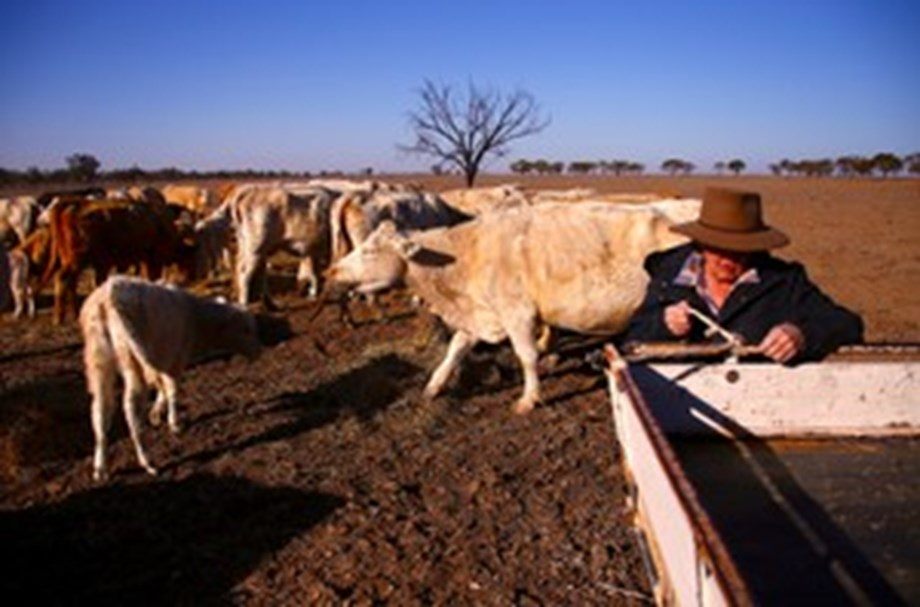 PM Turnbull announces extra $ 140 mln aid package for drought-hit farmers