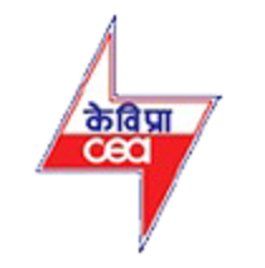 CEA pegged energy and peak power surplus at 4.6 pct and 2.5 pct