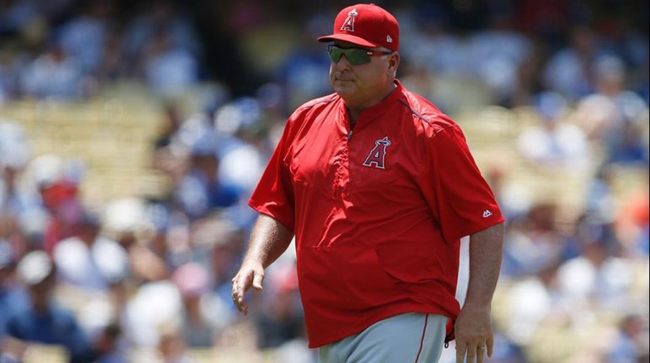 Mike Scioscia denies planning to step down