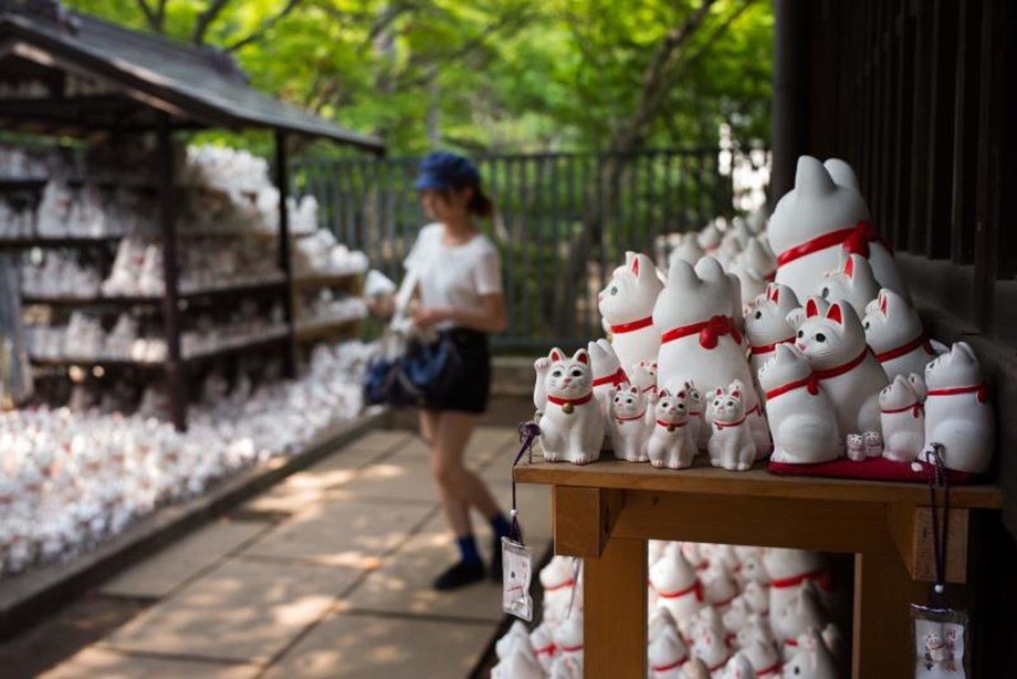 Tokyo's Gotokuji temple attracts Instagrammers too along with spiritual visitors