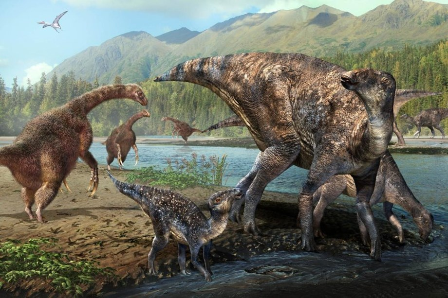 Researchers discover first North American co-occurrence of hadrosaur and therizinosaur tracks in Alaska