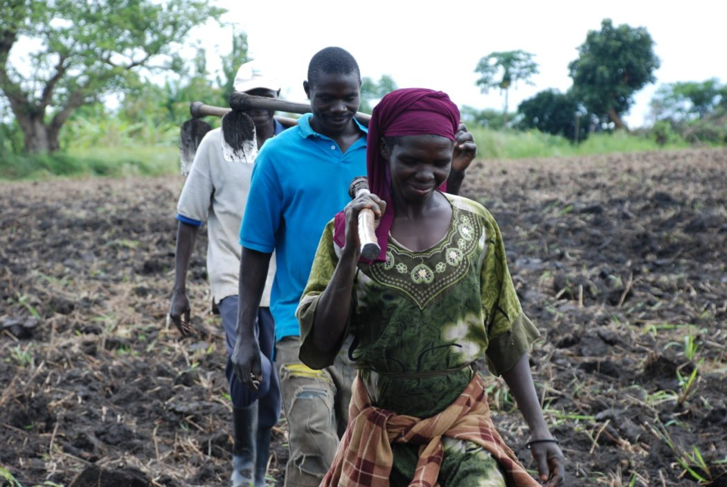 North Africa countries drawing a roadmap towards Zero Hunger, says FAO | Global Edition