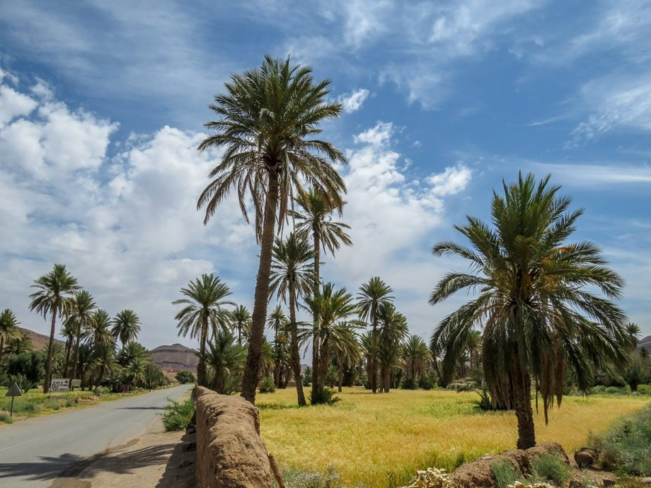 Road connectivity in rural Morocco boosting education, health sector