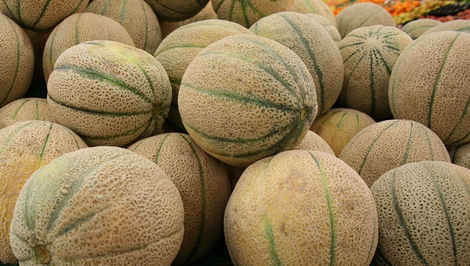WHO says Australia exported listeria-tainted melons to nine countries