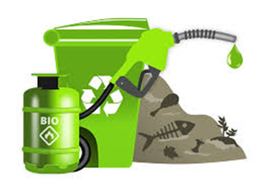 Union Government investing significantly to transform biomass to biofuel