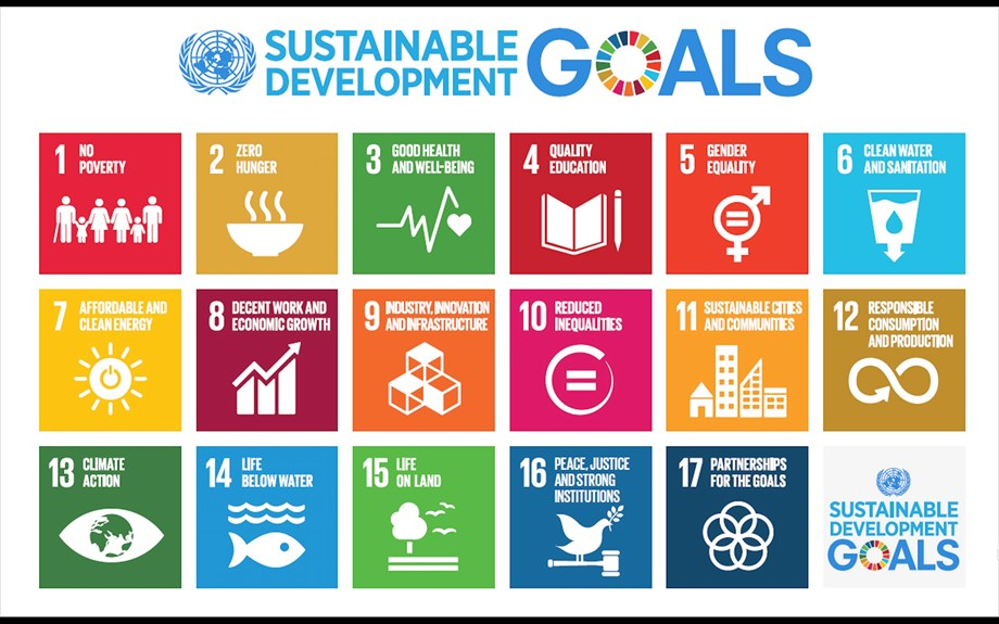 What are Sustainable Development Goals (SDGs)?