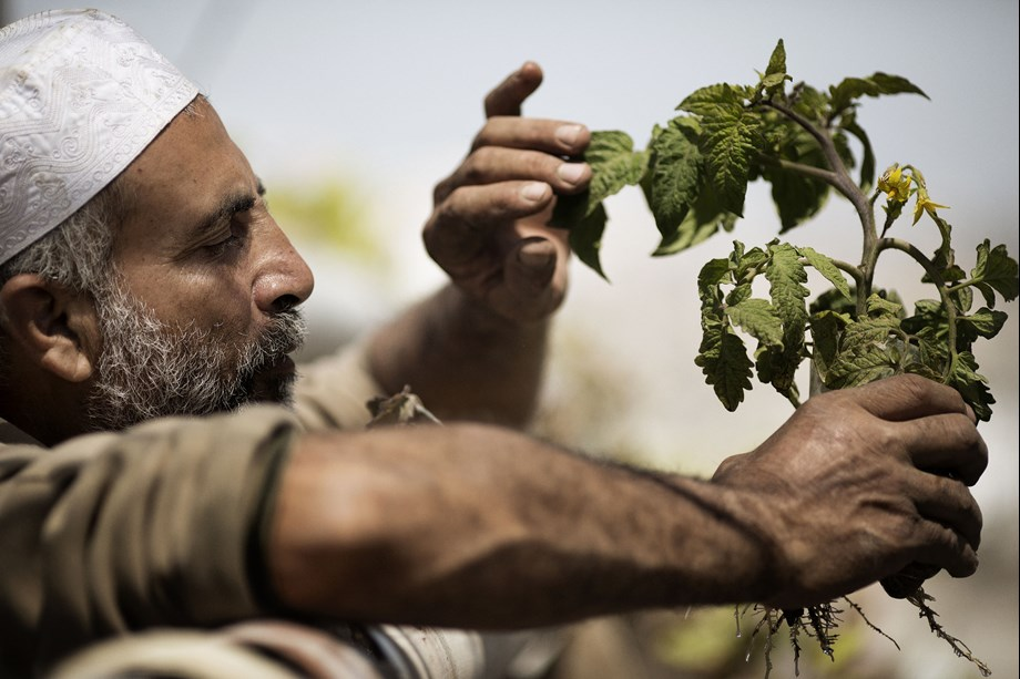 NITI Aayog discusses promotion of Zero Budget Natural Farming