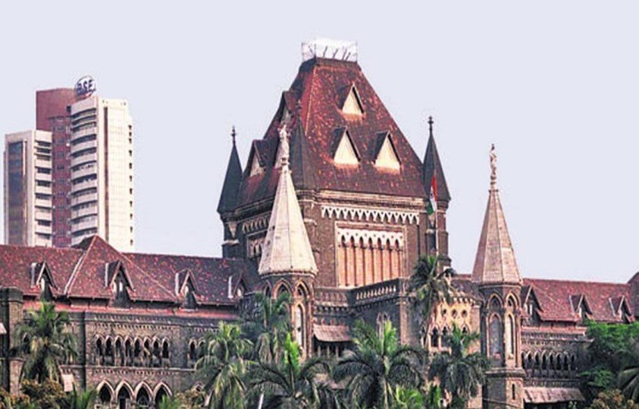 Maha HC urges govt to devise scheme for attracting doctors to practice in rural areas
