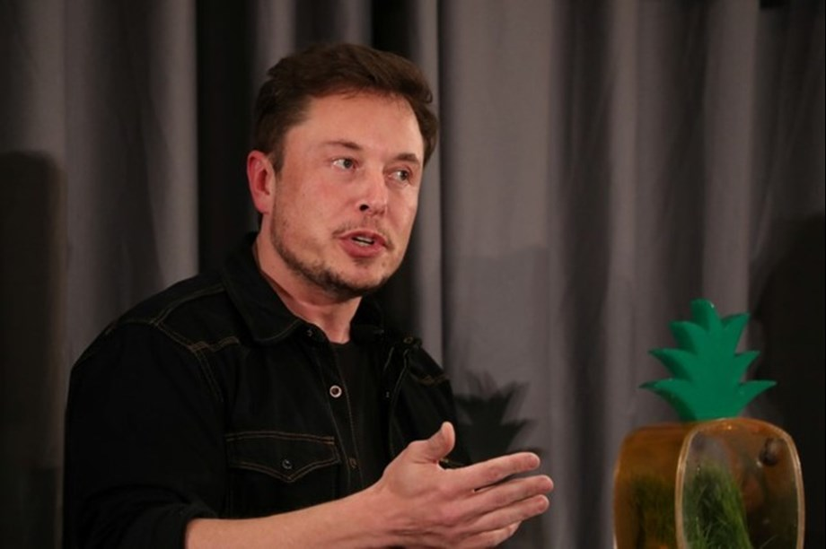 Musk and Tesla targeted by two fraud procedures