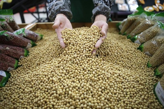China does not need U.S. soybeans for state reserves: Sinograin official