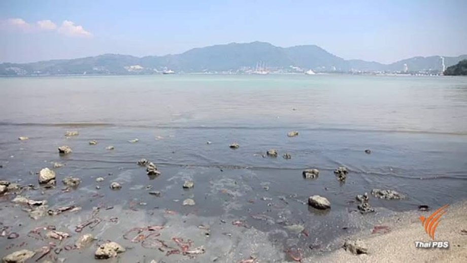 Efforts under way to tackle pollution in the seas of Phuket and Krabi