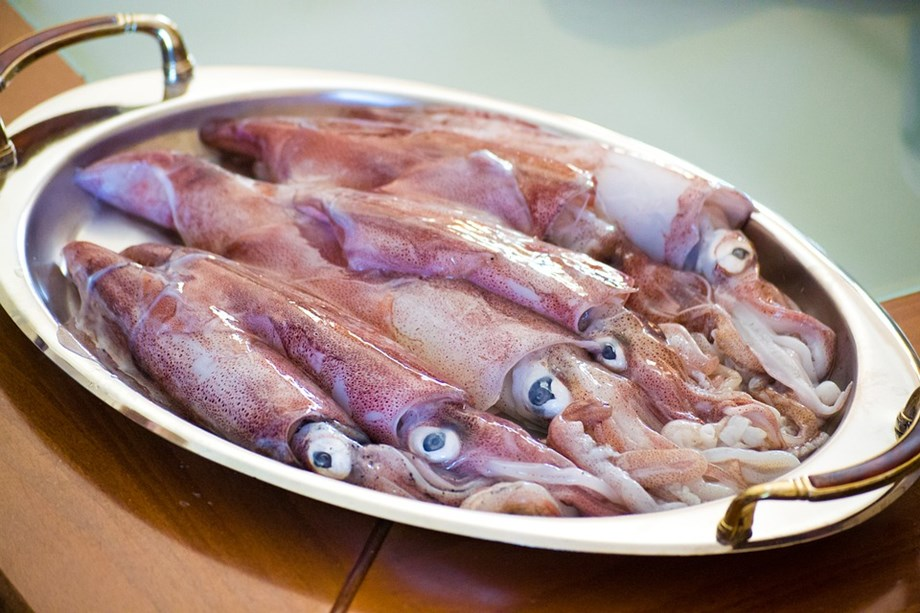 IAEA project to understand effects of ocean acidification on seafood