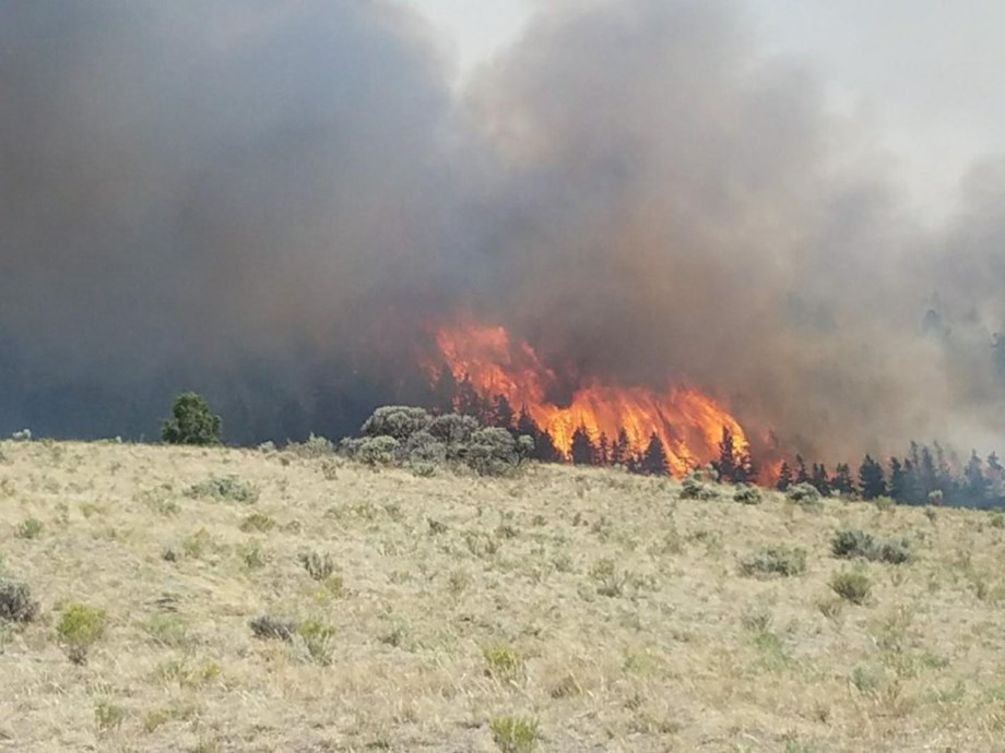 Colorado wildfire: Danish man charged with starting massive wildfire