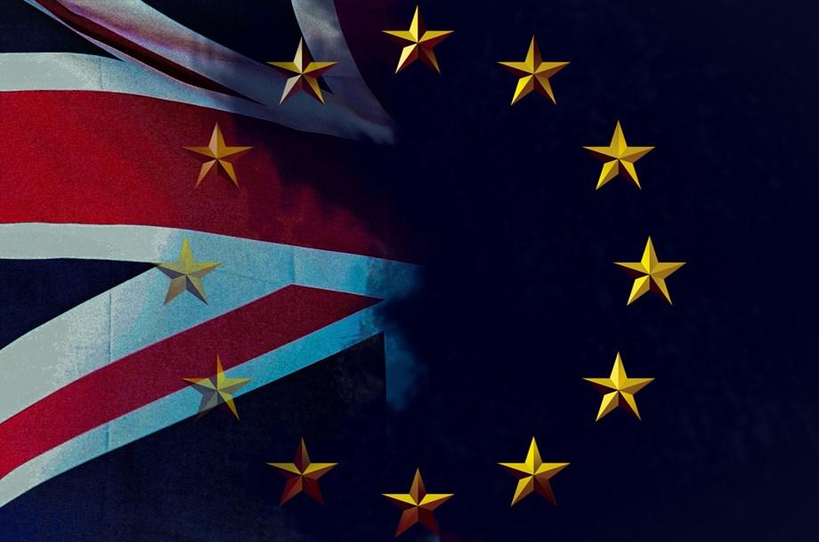 Assessing Brexit proposals is EU Commission's job - German govt
