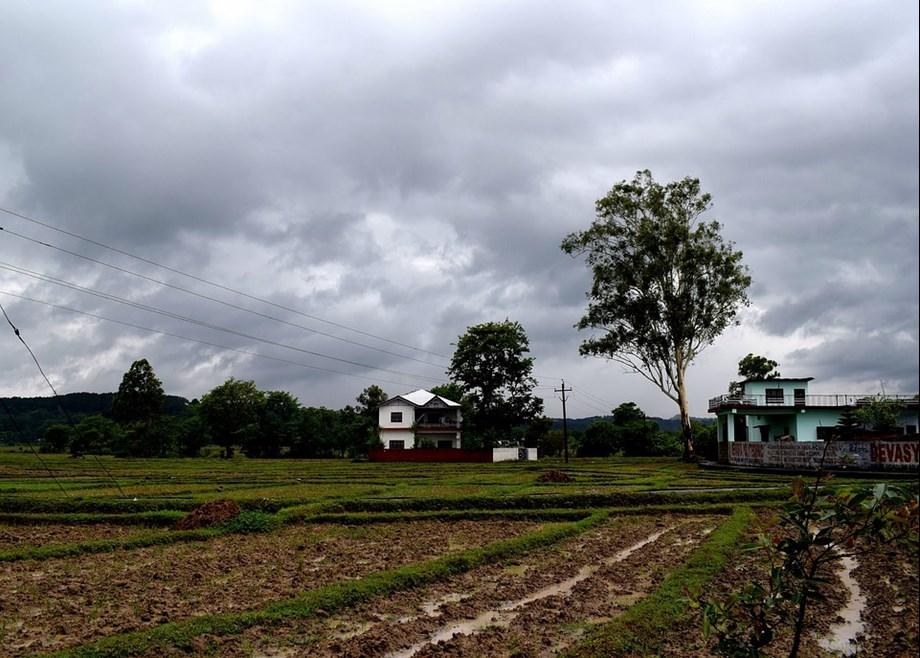 Heavy rain lashed many parts of Odisha