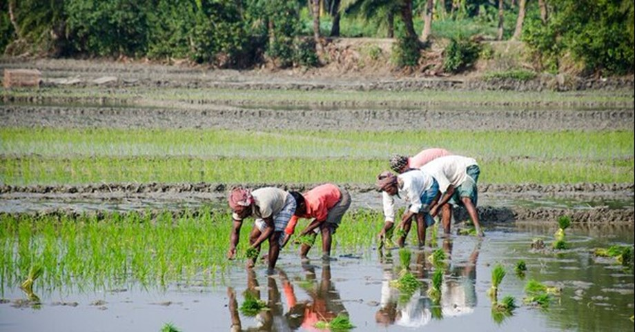 Management of surface, subterranean water resources to raise agricultural sector