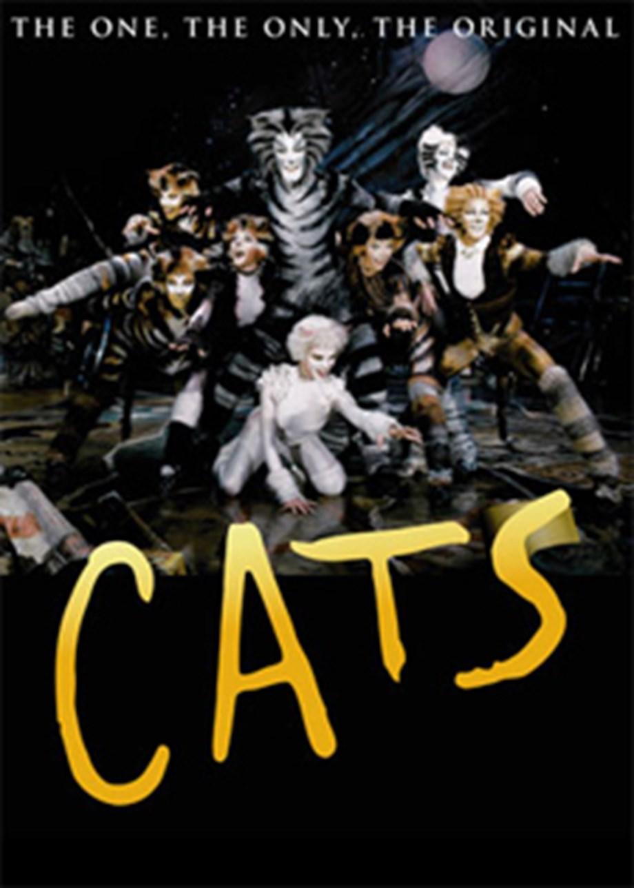 "Hudson, Corden, McKellen and Taylor Swift to act in Hooper's musical ""Cats"""