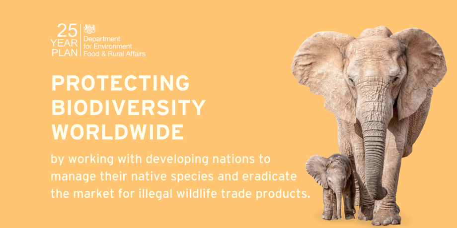 UK finances £10 mn to Darwin Initiative for international conservation projects