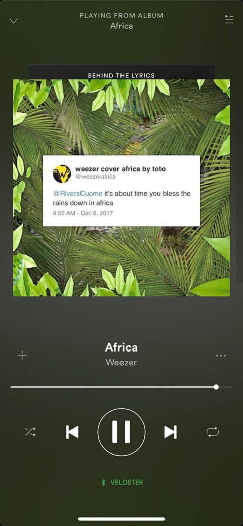 Toto on on Weezer\'s hit cover of Africa | Devdiscourse News