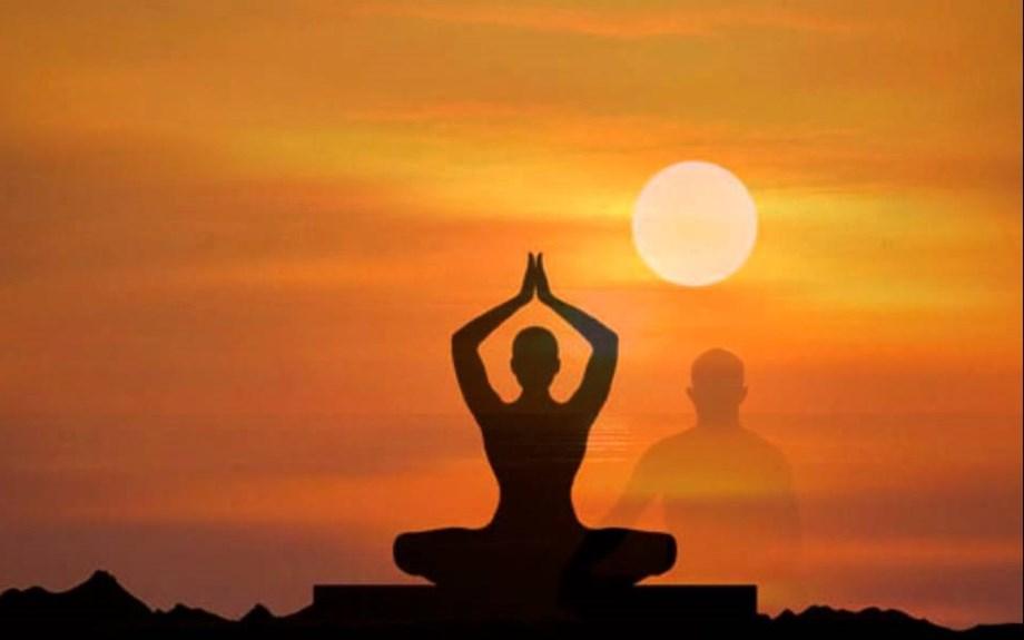 The International Yoga Fest in New Delhi
