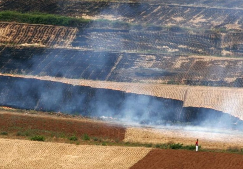 World Bank supports East Asia to control agricultural pollution