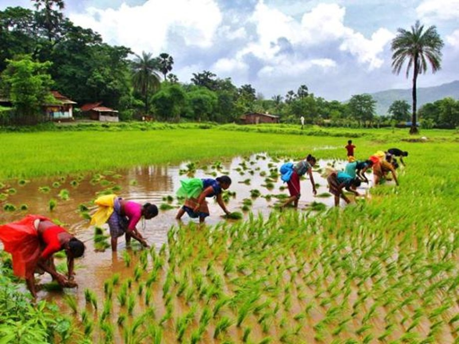 Solutions for Green Agriculture in East Asia: World Bank