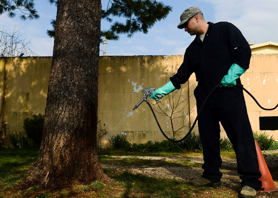 IAEA helps Europe to develop insect pest control protocol