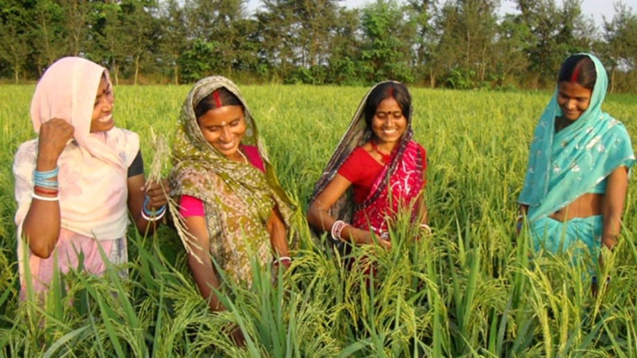 World Bank Board approves USD 250 mn project to boost rural incomes across 13 states in India