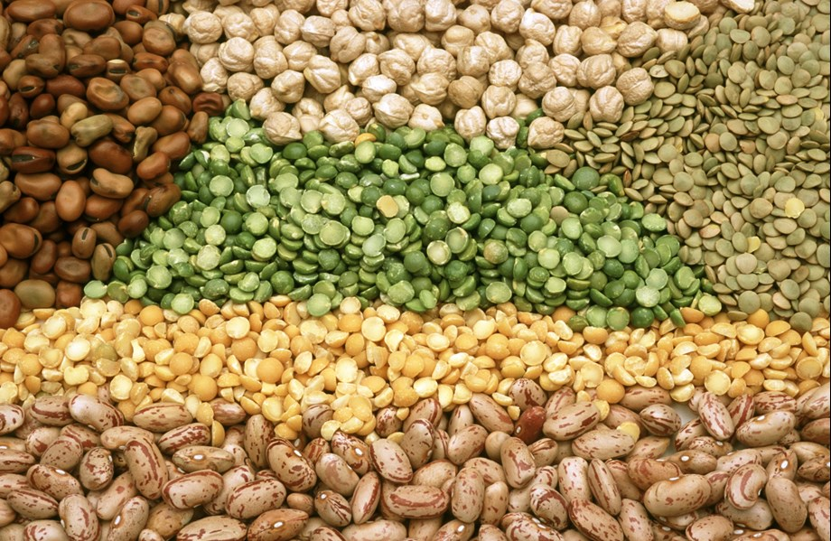 Weak conditions emerged at wholesale pulses market