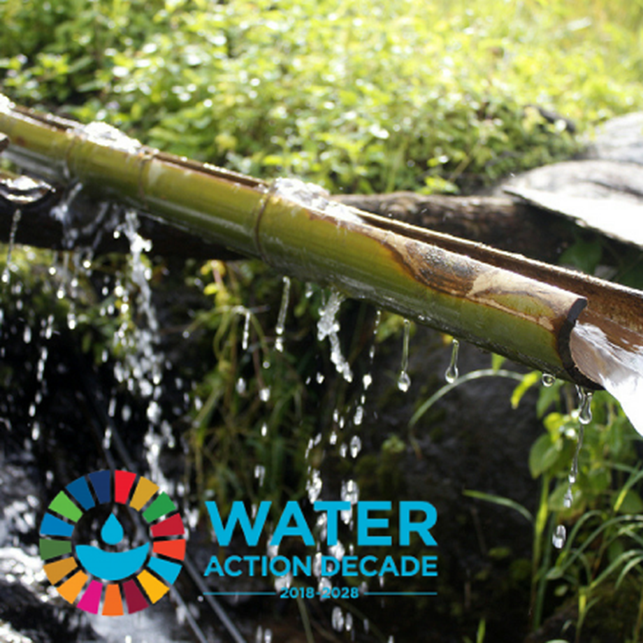 The New Decade on Water for Sustainable Development: Nature for Water