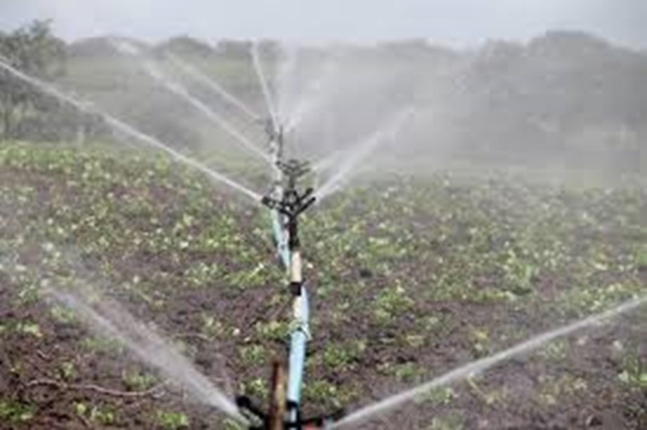 World Bank announces USD 140 mn  project to support irrigation in Tunisia