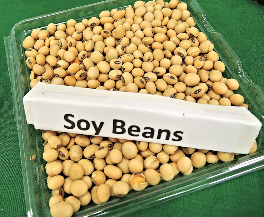 Robust demand lifts refined soya oil futures 0.32 pc