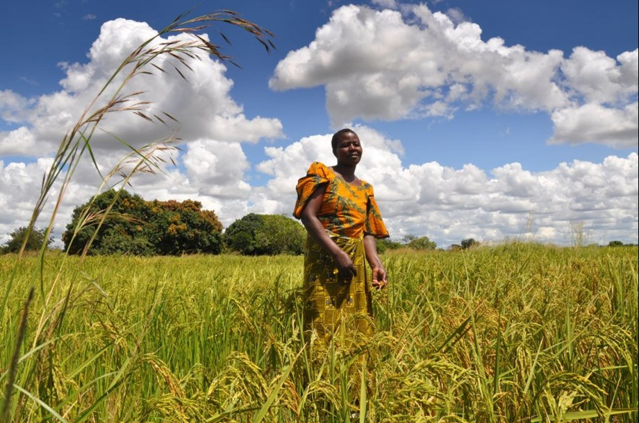 Minister of Agriculture shares progress report of PDAR at recent workshop in Africa