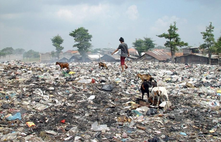 IIT Delhi-govt to work on waste management to make India a 'waste free nation'