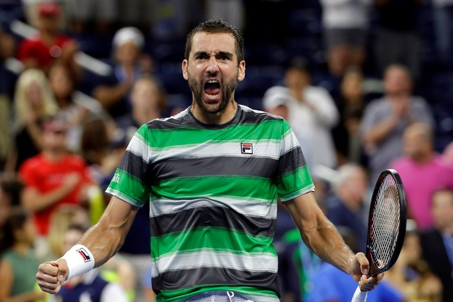 Solid Cilic takes Croatia to second Davis Cup title