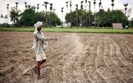 New farm bills in India: Focusing on farms or farmers?