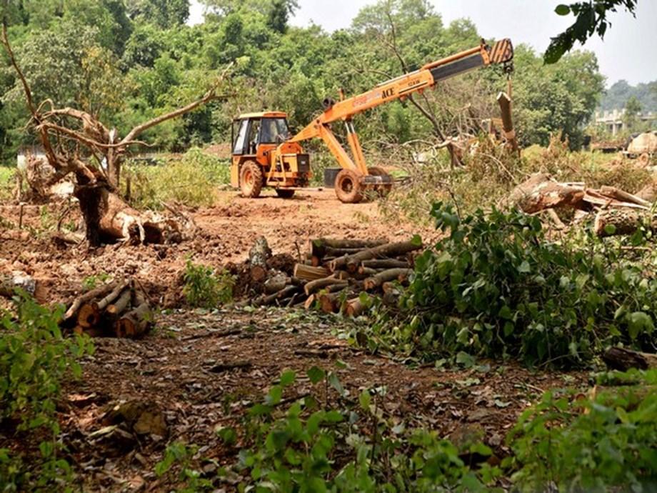 SC restrains Maharashtra govt, MMRDA for 2 weeks from felling trees to make metro line