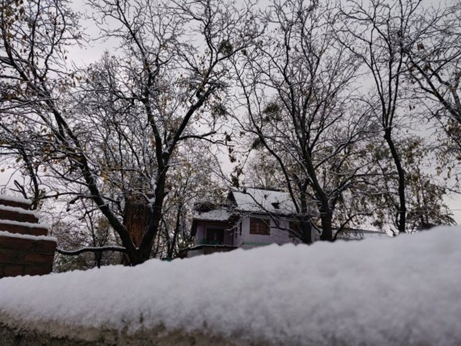 White misery: Kashmir's apple growers ruined by snow
