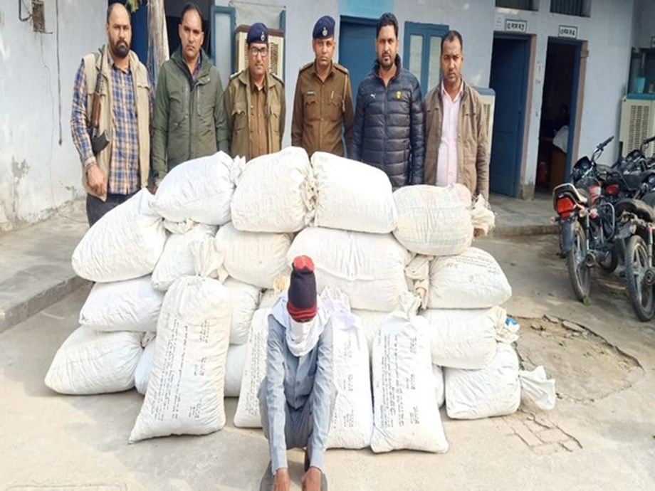 Haryana Police seizes 193 kg of 'doda post' in Sirsa, one arrested