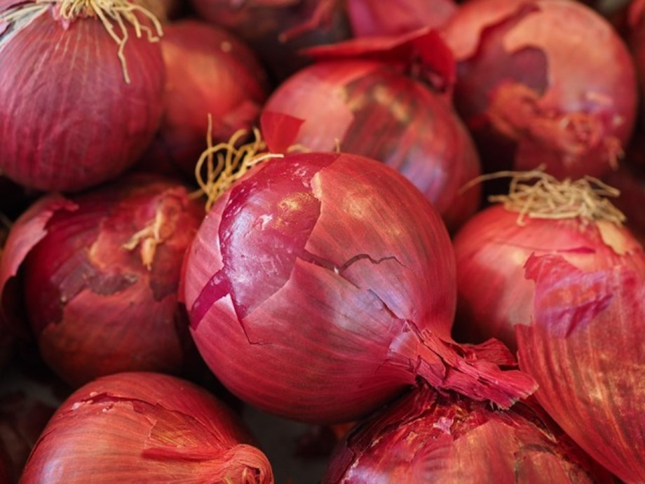 Hussain reviews issue of onion retail prices