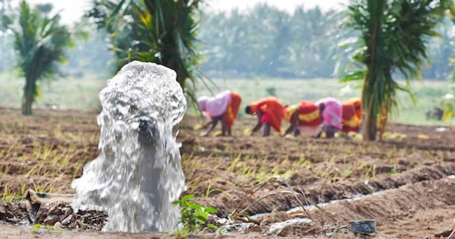 Simple, low-cost DIY solution battling contaminated groundwater in Assam