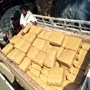 AP: Police seize 500 kg of cannabis, arrest 2 people in Narsipatnam