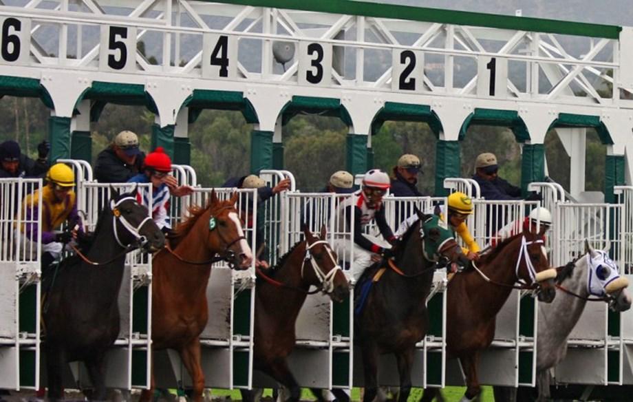Horse racing-Bricks and Mortar edges United in Breeders' Turf