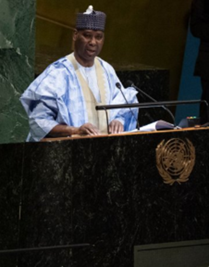 Updates: SDGs in UN General Assembly, 74th Session